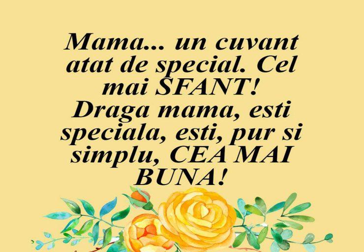 Mama… cel mai SFÂNT CUVÂNT! - SteMir